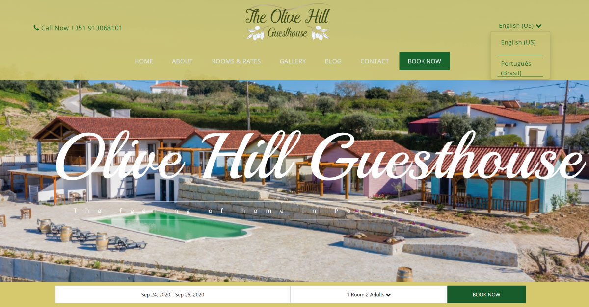 olive hill guesthouse website